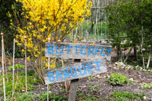 'Butterfly Banquet sign near the café in Arne