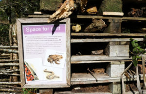 Reptile 'hotel' and information board at Arne's nature reserve