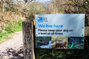 Reminder sign to keep your dog on a lead at all times at RSPB Arne