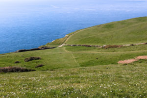 Hill down to Dancing Ledge