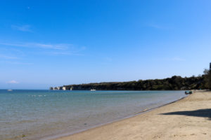Old Harry Rocks in the distance and birds on the sea at South Beach, Studland
