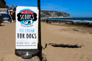 Scoops Ice Cream for dogs outside The Cabin on Swanage Beach