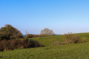 Hills of The Downs in Swanage