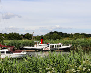 The Monarch paddles steamer on the River Frome in Wareham