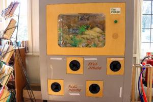 Jurassic themed sensory boxes at Durlston