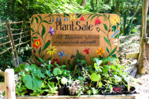 Painted 'Plant Sale' sign outside the volunteer shed at Durlston Country Park