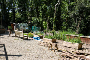 Durlston Country Park's volunteer shed garden area