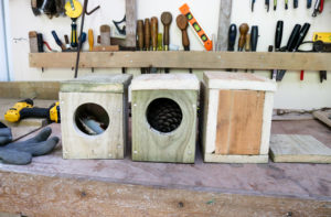 Sensory boxes in progress at Durlston Country Park's The Shed,