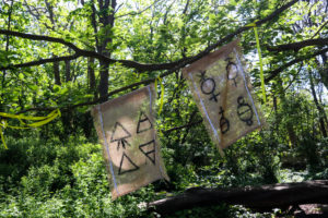 Symbols on flags as part of Durlston's Woodland Clan Activity Trail