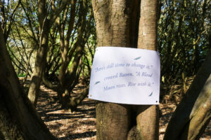 Quote from The Woodland Clan story, Durlston