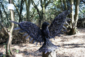 Woodland Clan activity trail at Durlston Country Park