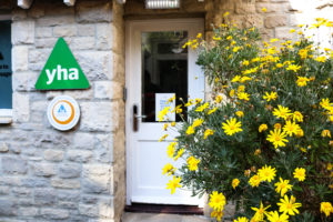 Yellow flowery bush and welcome signs at the back of the Swanage YHA