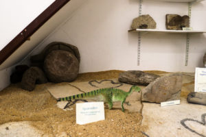 Model iguanodon in the reptile display section of the Corfe Castle village museum