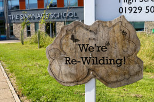 Wooden re-wilding sign on the premises of the Swanage School, Purbeck