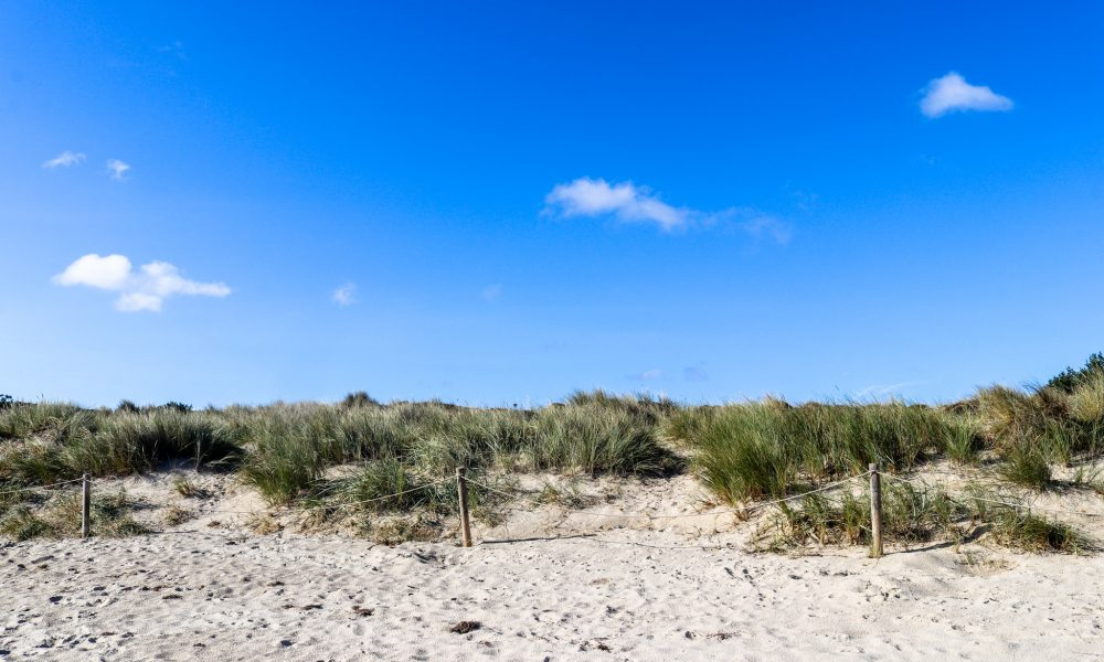 Sand, grass and sky at Studland's Knoll Beach