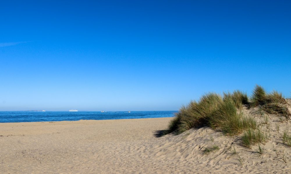 Sand dune and beach at Studland's Shell Bay