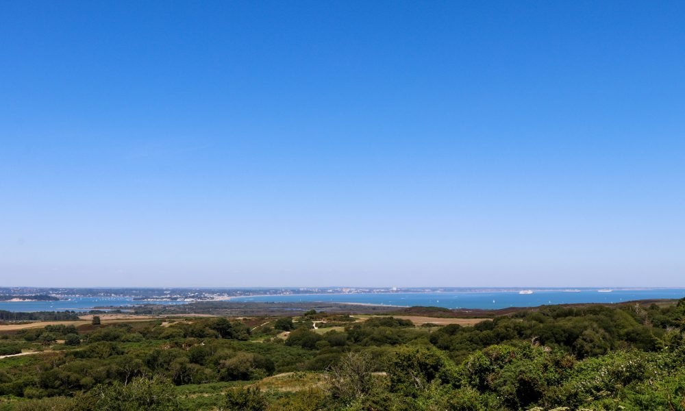 Poole Harbour view from Swanage Viewpoint
