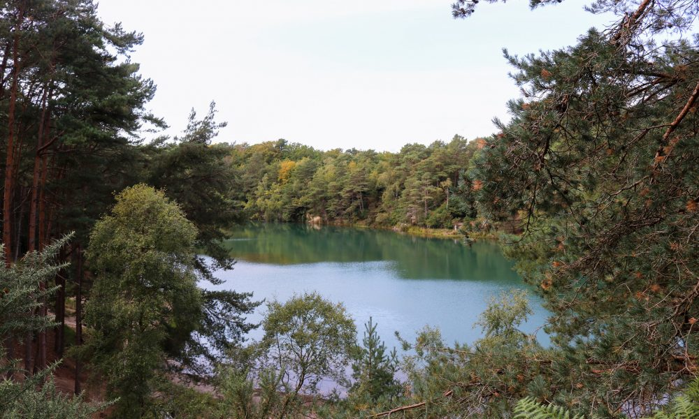Blue Pool viewed through pine trees
